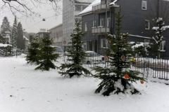 weihnachtsverlosung2011-0