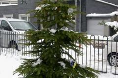 weihnachtsverlosung2011-14